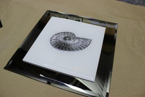 steklar-tamse-fbk-klonia-slike-v-steklu-8